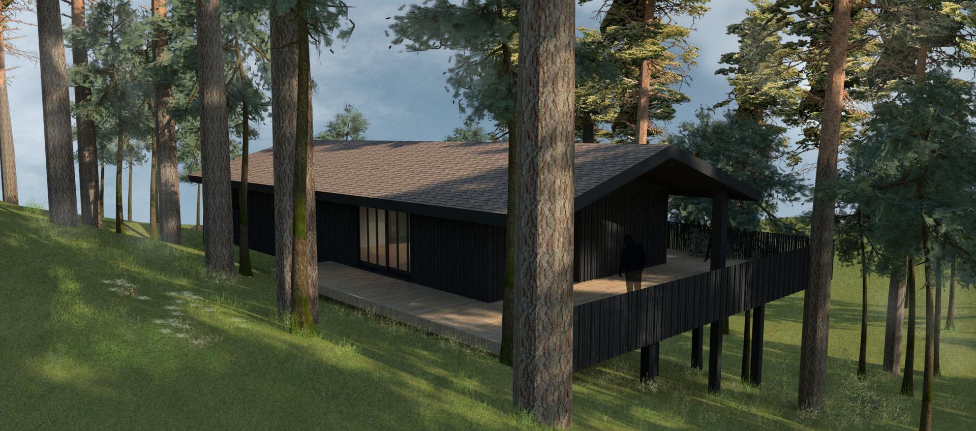 construction d 39 une villa ossature et bardage bois biscarosse architectes roode arag es. Black Bedroom Furniture Sets. Home Design Ideas
