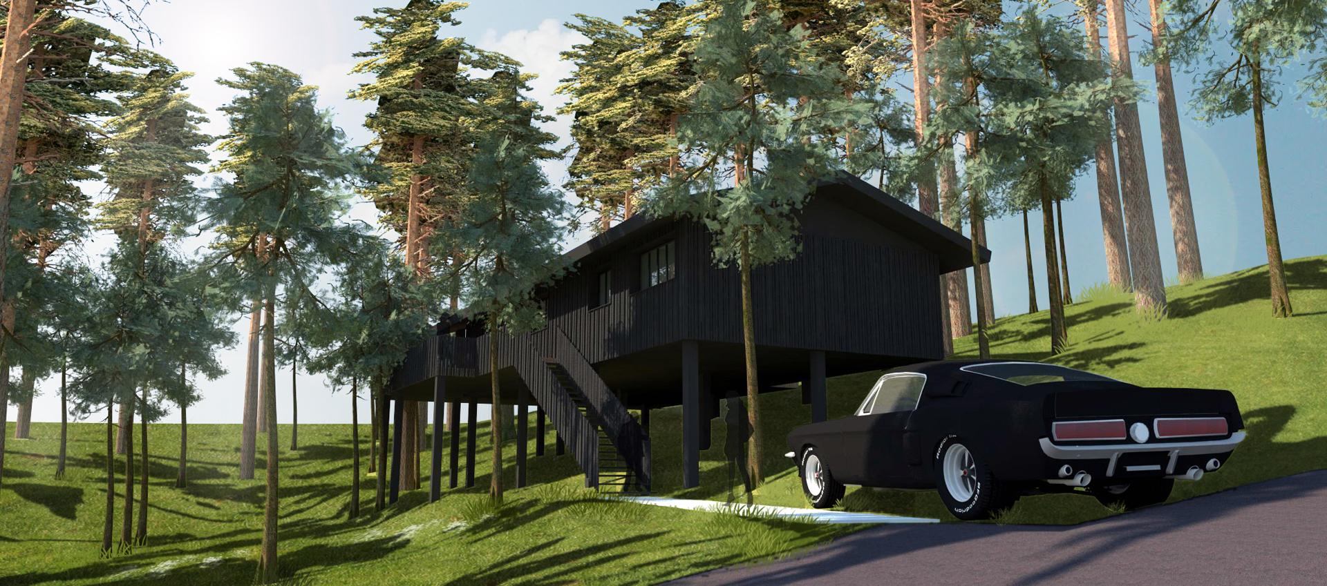 villa bois à BIscarosse